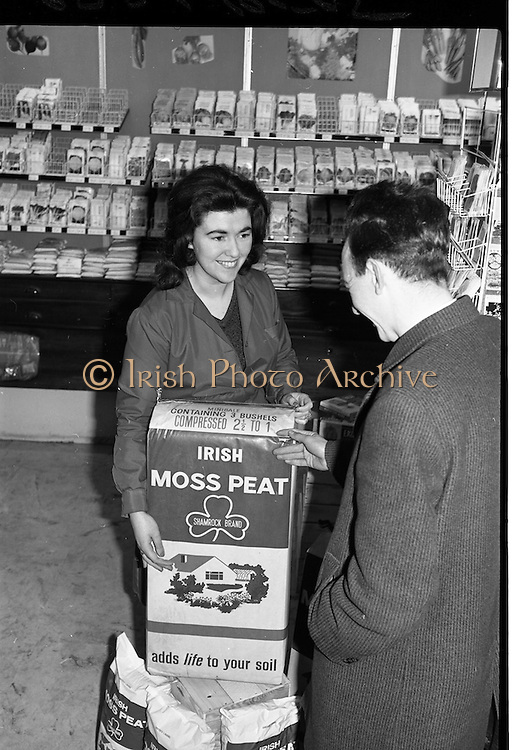 """06/03/1964<br /> 03/06/1964 <br /> 06 March 1964 <br /> New Moss Peat packs introduced by Bord na Mona. Picture shows """"a pretty shop assistant showing the new Moss Peat pack to a customer"""" at unnamed store."""