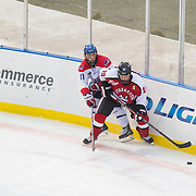 Mike Szmatula #19 of the Northeastern Huskies and Stephen Buco #11 of the UMass Lowell Riverhawks in action during the Frozen Fenway game between The Northeastern Huskies and The UMass Lowell Riverhawks at Fenway Park on January 11, 2014 in Boston, Massachusetts.