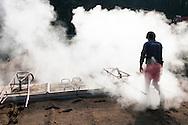 France, Languedoc Roussillon, Cévennes, Gard, culture d'oignons doux des Cévennes, Saint André de Majencoules, Peyregrosse, Louis Salenson, désinfection des terres à la vapeur