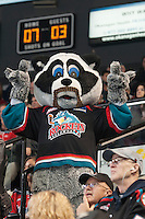 KELOWNA, CANADA - NOVEMBER 8: Rocky Racoon, the mascot of the Kelowna Rockets, shows off his mustache in support of Movember on November 8, 2014 at Prospera Place in Kelowna, British Columbia, Canada.   (Photo by Marissa Baecker/Shoot the Breeze)  *** Local Caption *** Rocky Racoon;