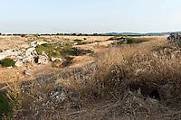 Masseria Torre Bianca..Situata all'interno del Parco naturale regionale delle Dune Costiere, che si estende nei territori di Ostuni e Fasano su circa 1.000 ettari, lungo 6 km di costa da Torre Canne a Torre San Leonardo.  La masseria, attualmente in stato di abbandono, è situata a circa 3 km dal mare e circa 4 dalle prime colline murgiane nel territorio di Ostuni, tra la statale 379 e la via Traiana, ed è stata costruita sulla Lama di Fiume Morelli. Tutto il parco è caratterizzato da lame e gravine, fenomeni carsici tipici delle murge originati dall'azione erosiva delle acque che hanno favorito la nascita di insediamenti rupestri in età medievale. Contrariamente ad altre zone costiere dell'alto salento, caratterizzate da uliveti, la zona è alquanto deserta, sia per densità abitativa che per vegetazione, quella tipica dell'area carsica murgiana. Alla masseria si arriva passando nei seminativi, lungo strade di terra battuta.