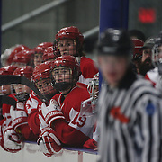 The Boston University bench watch the action during the UConn Vs Boston University, Women's Ice Hockey game at Mark Edward Freitas Ice Forum, Storrs, Connecticut, USA. 5th December 2015. Photo Tim Clayton
