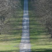 Estate Drive, Oxfordshire