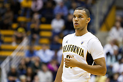 November 16, 2010; Berkeley, CA, USA;  California Golden Bears guard Emerson Murray (31) before a free throw against the Cal State Northridge Matadors during the first half at Haas Pavilion.  California defeated Cal State Northridge 80-63.