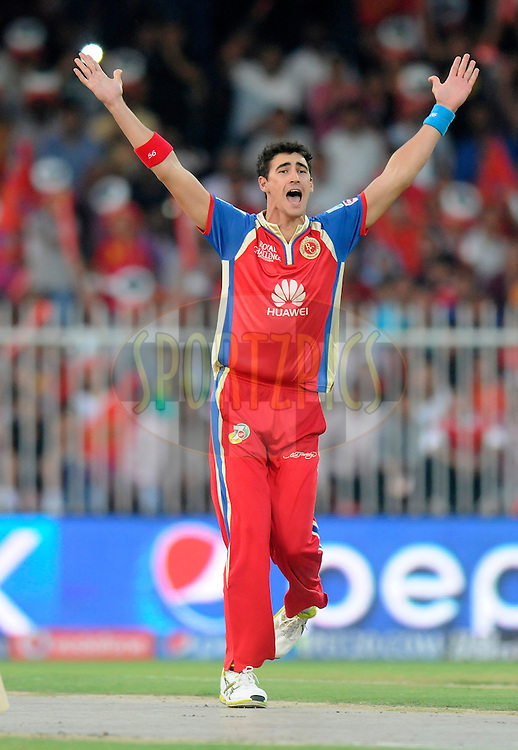 Mitchell Starc of the Royal Challengers Bangalore appeals successfully for the wicket of Gautam Gambhir captain of the Kolkata Knight Riders during match 11 of the Pepsi Indian Premier League 2014 between the The Royal Challengers Bangalore and the Kolkata Knight Riders  held at the Sharjah Cricket Stadium, Sharjah, United Arab Emirates on the 24th April 2014<br /> <br /> Photo by Pal Pillai / IPL / SPORTZPICS