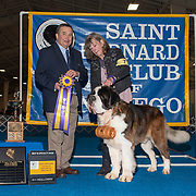 Saint Bernard Club of San Diego 2019