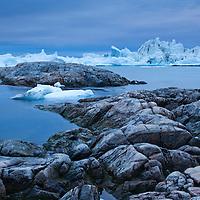 Greenland, Ilulissat, Icebergs calved from Jakobshavn Glacier at entrance into Disko Bay along rocky coastline on overcast summer evening