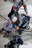 KELOWNA, CANADA -FEBRUARY 10: An official gets between Riley Stadel #3 of the Kelowna Rockets and Justin Hickman #9 of the Seattle Thunderbirds in the final moments of the third period on February 10, 2014 at Prospera Place in Kelowna, British Columbia, Canada.   (Photo by Marissa Baecker/Getty Images)  *** Local Caption *** Riley Stadel; Justin Hickman;