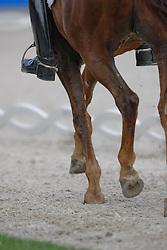 Details - benen<br /> CHIO Aachen 2009<br /> Photo © Hippo Foto
