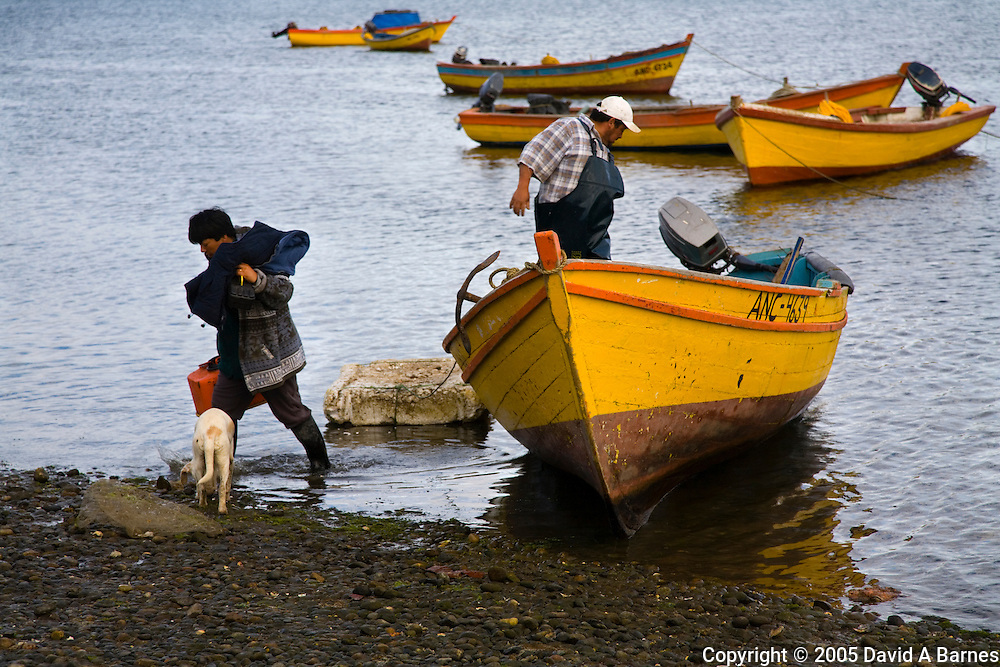 End of hard day harvesting seaweed, Chiloe, Patagonia, Chile