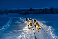 Dog sledding, Tromso Wilderness Centre (Tromso Villmarkssenter), Kvaloya Island, near Tromso, Arctic, Northern Norway.