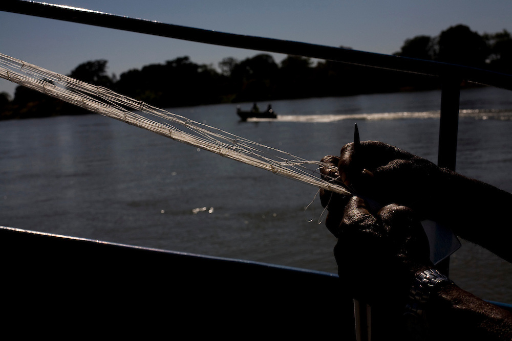 Ibiai_MG, Brasil...Rio Sao Francisco, o rio da integracao nacional. Na foto, pesca no rio...The Sao Francisco river, It is an important river for Brazil, called the river of national integration. In this photo, the fishing in the river...Foto: LEO DRUMOND / NITRO