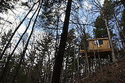 About 70 miles west of Albany, New York, a group of friends from Connecticut build treehouses in the woods of Amish country. They call their community The Root, after the town of Root, NY which is closest to their land.