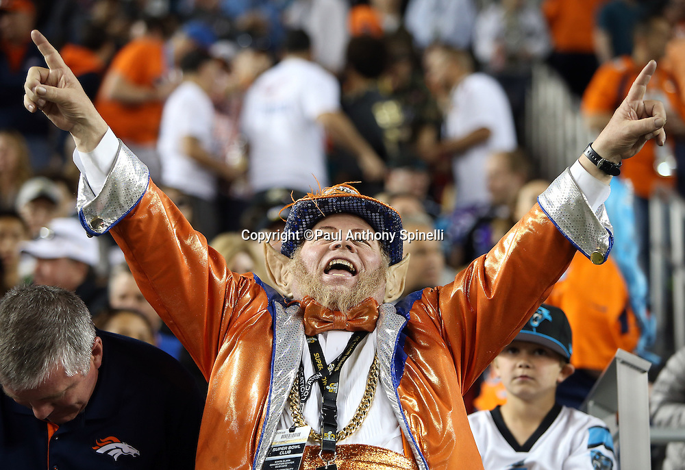 A Denver Broncos fan wearing team gear and a pair of elf ears cheers during the Denver Broncos NFL Super Bowl 50 football game against the Carolina Panthers on Sunday, Feb. 7, 2016 in Santa Clara, Calif. The Broncos won the game 24-10. (©Paul Anthony Spinelli)