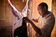 30 OCTOBER 2010 - PHOENIX, AZ: IBRAHIM SWARA-DAHAB butchers a goat at the Goat Meat Store, owned by Ibrahim Swara-Dahab, in Phoenix, AZ. Swara-Dahab came to the United States from Somalia in 1998. He has built a thriving business as a Halal butcher and provides freshly butchered goats and sheep killed following the precepts of Muslim tradition. His business not only caters to Muslims in the Phoenix area but also to refugees and immigrants from Africa and Asia. His small butcher shop is on the Gila River Indian Reservation, about 100 yards from the Phoenix city limits and doesn't have either running water or electricity.    Photo by Jack Kurtz