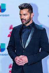 LAS VEGAS, NV - NOV 20 Ricky Martin arrives at the 2014 Annual Latin Grammy Awards on November 20, 2014 in Las Vegas, Nevada. Byline, credit, TV usage, web usage or linkback must read SILVEXPHOTO.COM. Failure to byline correctly will incur double the agreed fee. Tel: +1 714 504 6870.