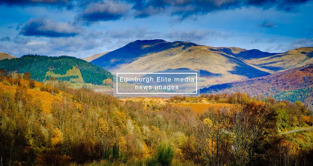 Autumn colour in the Trossachs National Park near Aberfoyle, Scotland<br /> <br /> (c) Andrew Wilson | Edinburgh Elite media