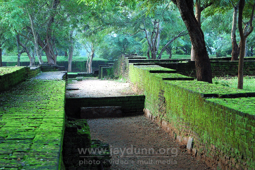 Sri Lanka, Polonnaruwa, 2006. Early morning tranquility at Polonnaruwa, a thousand years old now, and once the royal capital of the Sinhalese kingdom.