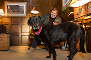 Television host and producer Ron Schara relaxes at home with his famous Labrador Retriever, Raven.