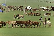 Mongolia. naadam Camp, on the outskirts of Ulan Bator. Horsemen from the steppe,    /  Cavaliers de la steppe à la sortie de Oulan bator: campement