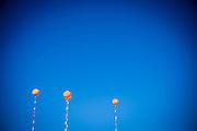 balloons n the blue sky