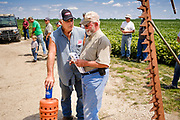 "06 AUGUST 2020 - FAIRFIELD, IOWA: Bidders chat during the auction on the Adam Farm near Fairfield. Gary Adam, 72 years old, has been farming in the Fairfield area since 1971. He decided to retire this year because he wants to travel and because it's so difficult to make money in farming this year. He said he wants to ""shed the risk and responsibility. If things were super good, like they were 2006-2012, I might stay in it, but they're not."" An increasing number of farmers in the Midwest are retiring this year as it becomes harder to make money on crops. In addition to low prices, Iowa farmers are being hit with a drought this year, with well below average rain over most of the state. Because of the COVID-19 pandemic, the auction on Adam's farm was one of the first live in person auctions since winter. Most auctions are now done on line.     PHOTO BY JACK KURTZ"