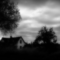 A old house tucked away in the darkenss of bushes and trees on a cloudy day.