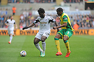 Wilfied Bony of Swansea City holds off  Norwich City Captain Sebastien Bassong.<br /> Barclays premier league match , Swansea city v Norwich city at the Liberty stadium in Swansea, South Wales on Saturday 29th March 2014.<br /> pic by Phil Rees, Andrew Orchard sports photography.