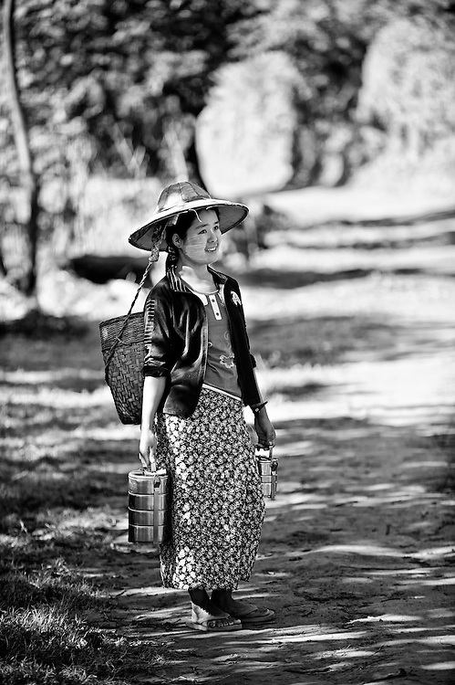 A tea farmer in the northern Shan state, Myanamr.