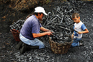 Idalina Moita and her grandson Andre picks up the sharcoal . In the village of Pilado in the county of Marinha Grande, sharcoal production goes back to the sixth century, always executed by women, today due to unemployment, men are taking the responsability for this handicraft industry. Sharcoal is used as an alternative  power, most of all to grill.Paulo Cunha/4see