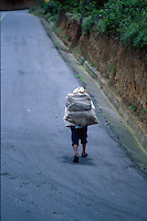 Man in traditional Mayan dress carries wood up a road, Western Highlands, Guatemala