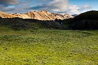 Green moss on Laugahraun lavafield in Landmannalaugar. Norðurbarmur mountain in background. Mosagróður í Laugahrauni, Norðurbarmur baðaður sól í bakgrunni.