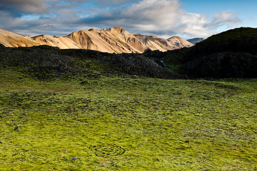Green moss on Laugahraun lavafield in Landmannalaugar. Norðurbarmur mountain in background. Mosagróður í Laugahrauni, Norðurbarmur baðaður sól í bakgrunni.