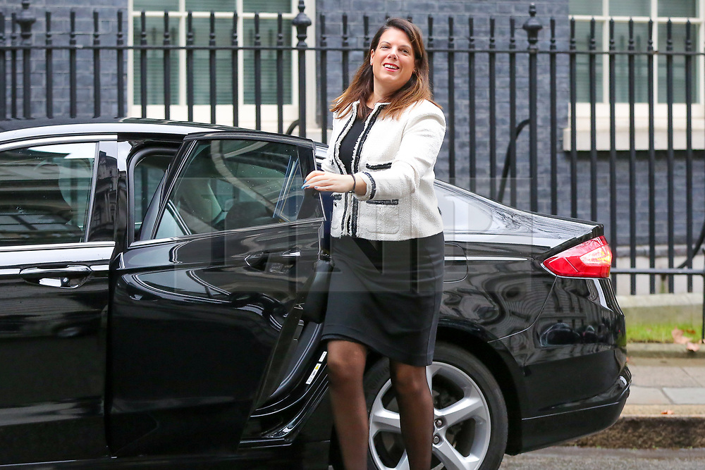 © Licensed to London News Pictures. 05/02/2019, London, UK. Caroline Nokes - Minister of State for Immigration arrives in Downing Street for the weekly Cabinet meeting. Photo credit: Dinendra Haria/LNP