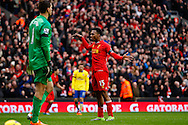 Daniel Sturridge of Liverpool celebrates scoring his first goal of the game as Wojciech Szczesny of Arsenal (left) looks on during the Barclays Premier League match at Anfield, Liverpool<br /> Picture by David Horn/Focus Images Ltd +44 7545 970036<br /> 08/02/2014