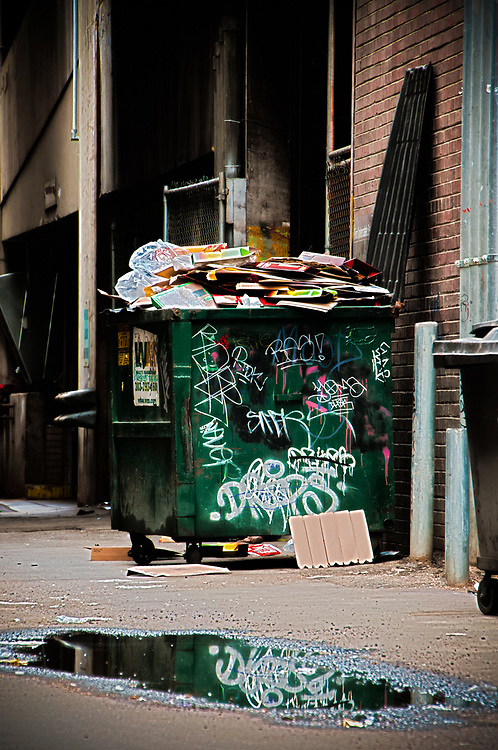 This shot shows a graffitied dumpster in a back alley on the 16th street mall in Denver Colorado.<br />