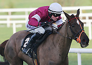 Leopardstown Races 090214