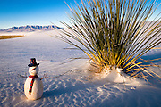 It is Christmas time on White Sands National Monument in New Mexico.