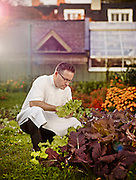 Chef looking at home grown goods at Langdon Hall shot as a Environmental Portraiture on a PhaseOne IQ180