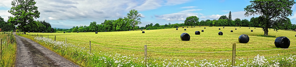 Rolling countryside in rural Sussex, England, during springtime.