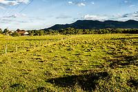 Paisagem rural. Biguaçu, Santa Catarina, Brasil. / Rural landscape. Biguacu, Santa Catarina, Brazil.