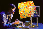 "Virtual reality: Ralph Hollis, IBM, NY ""Feeling"" Gold Atoms working with a scanning tunneling microscope (STM) (at right) linked to a tele-robotic manipulation system with atomic scale force-feedback. The minute movements of the STM's probe as its traverses the gold sample surface is linked to a force-feedback magic wrist, enabling the scientist, whose hand is in contact with the magic wrist, to feel the texture of the gold atoms. In background is a false-color STM image of the gold surface, revealing the cobbled pattern of individual atoms. The photo was taken at IBM's Thomas Watson Research Centre, Yorktown Heights, New York. Model Released (1990)"