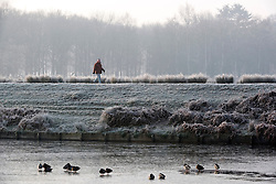 © Licensed to London News Pictures. 23/01/2015. Richmond, UK . A man walks past duck sitting on a frozen pond. A cold frosty morning in Richmond Park, Surrey today 23rd January 2015. The UK is experiencing some very cold weather. Photo credit : Stephen Simpson/LNP