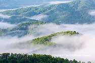 66745-04912 Early morning fog along Foothills Parkway Great Smoky Mountains National Park TN