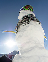 A snowman basking in the sun in Gilford on Monday morning. (Karen Bobotas/for the Laconia Daily Sun)