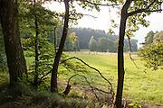 Rehbachtal bei Michelstadt zwischen Rehbach und Steinbach, Odenwald, Naturpark Bergstraße-Odenwald, Hessen, Deutschland   Rehbach valley near Michelstadt, Odenwald, Hesse, Germany