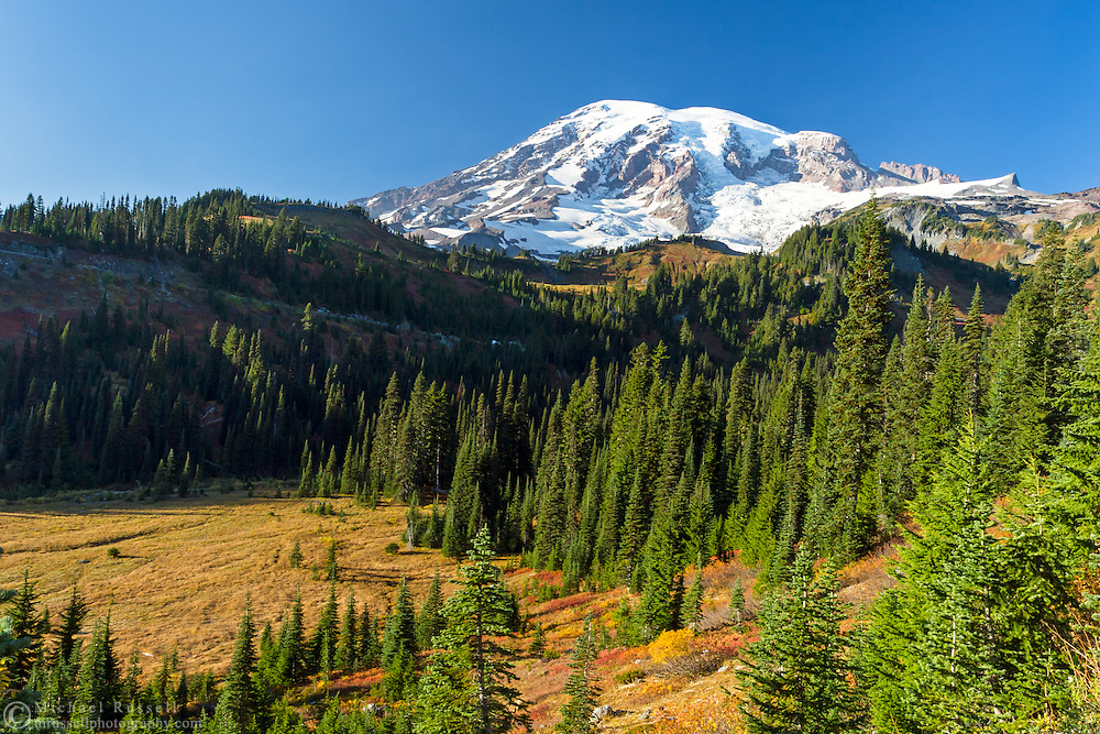 View of Mount Rainier from Paradise Valley.  Photographed along Paradise Valley Road in Mount Rainier National Park, Washington State, USA