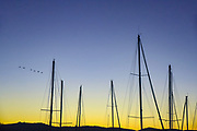 Yacht masts at sunset photographed in South Africa