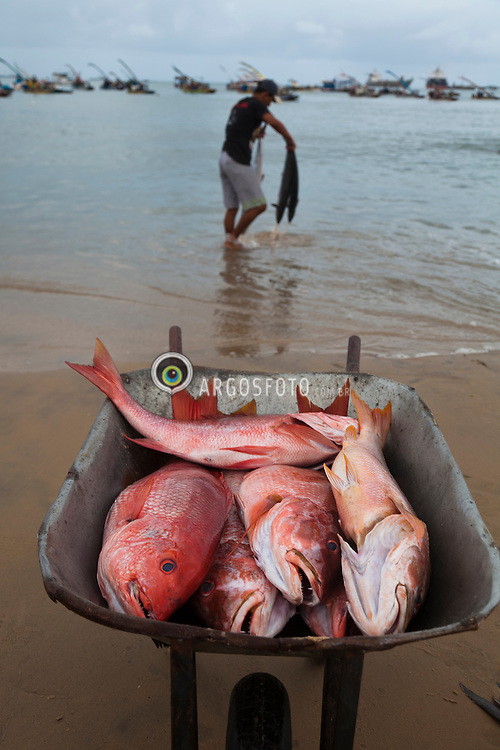 Praia do Mucuripe em Fortaleza, Ceara. Logo ao amanhecer pescadores vendem os peixes trazidos nas famosas jangadas. / The fish markert at Mucuripe Beach in Fortaleza, the state capital of Ceara. Fortaleza is the 5th largest city in Brazil.