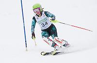 Tony Buttinger Memorial Slalom J4 J3 February 13, 2011.